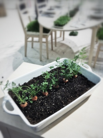 .nordiska trädgårdar 2012:1