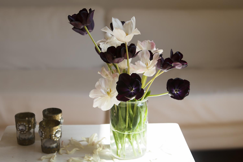 Tips för långlivade tulpaner