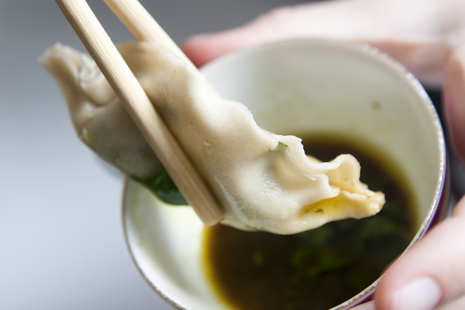 Dumplings (vegan) – fest i januari!