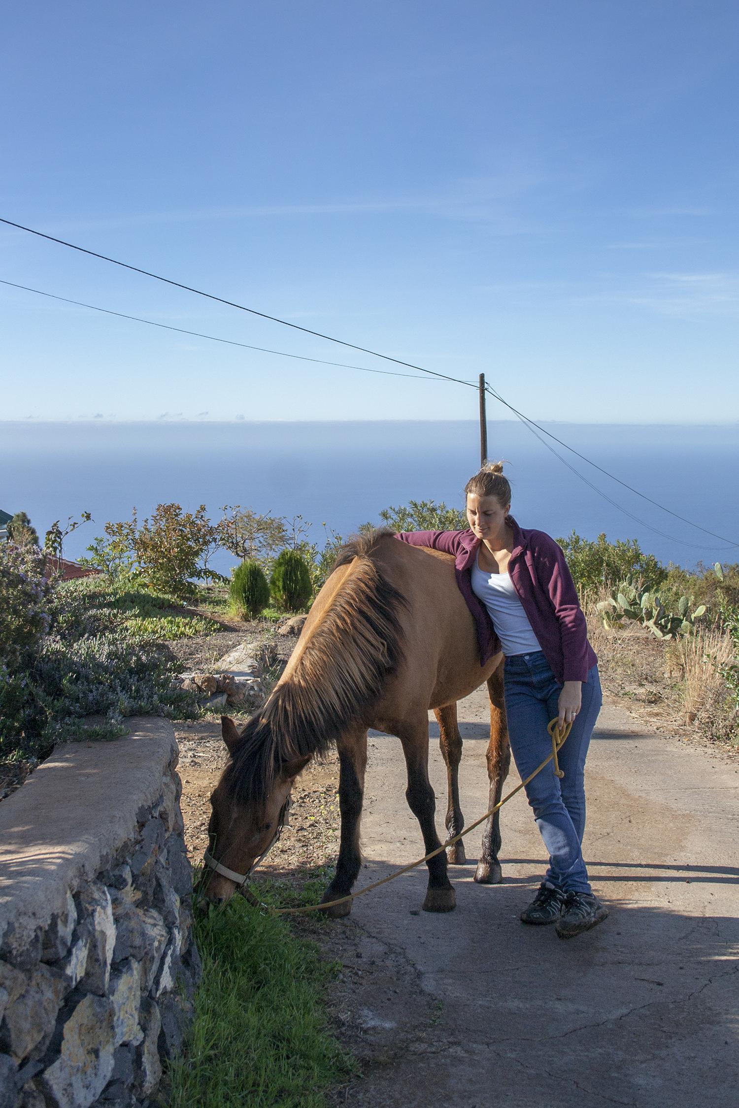 Linnea med häst