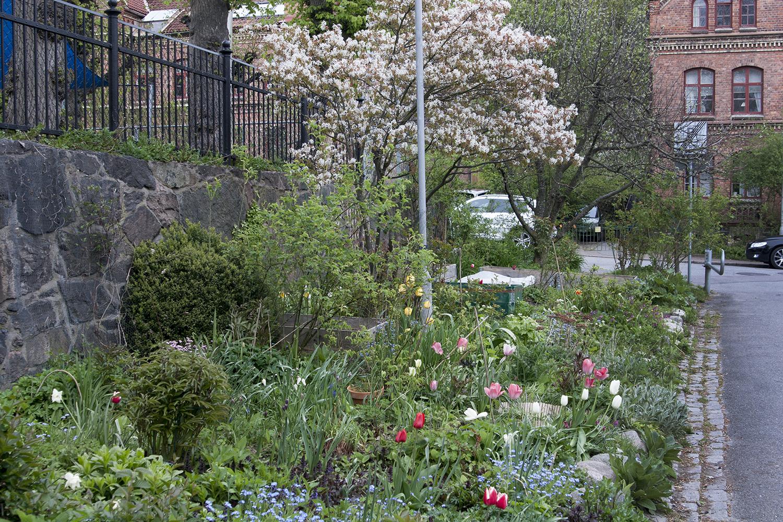 Nya trädgårdsföreningen