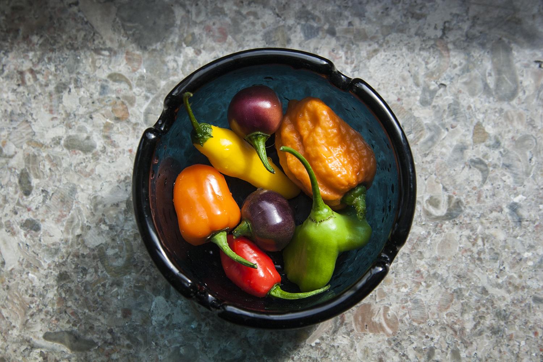 Chili – utvärdering och sorttips