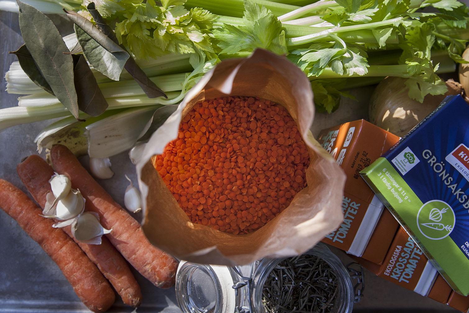 Earth Day varje dag – och recept på klimatsmart bolognese