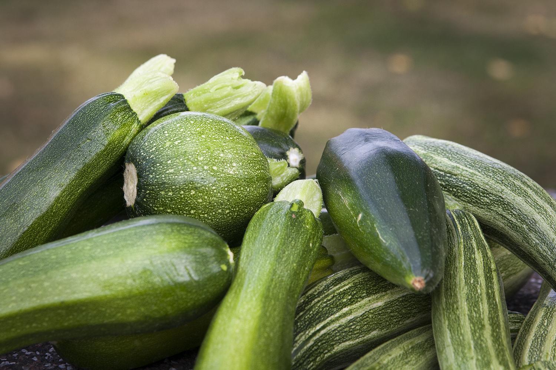 Zucchini – till frukost, lunch, fika och middag