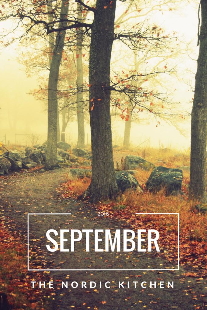 Om september + 5 luftrenande växter att ha hemma