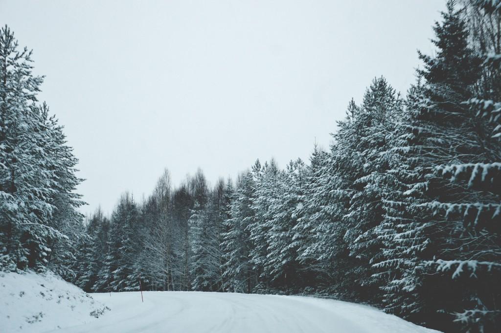 december_-001