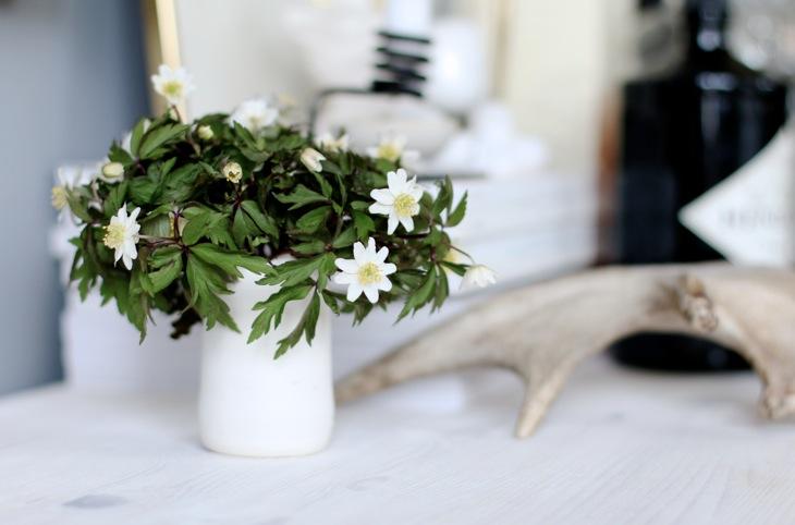 Vårens finaste blomma