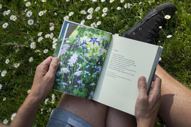 Litteraturvecka – vårens skörd av trädgårdsböcker – tips 3