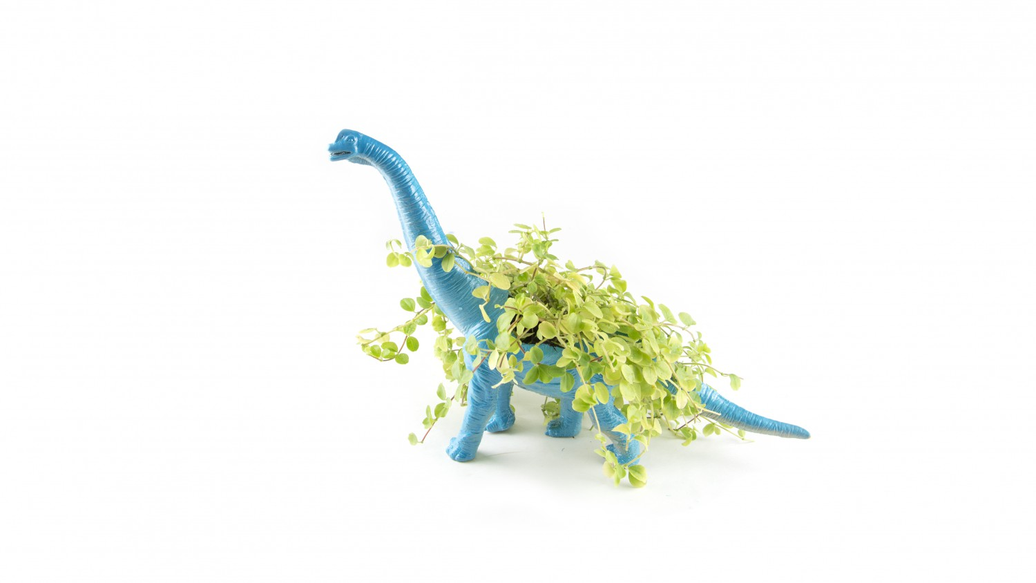 Lucka 9: Dino Planter
