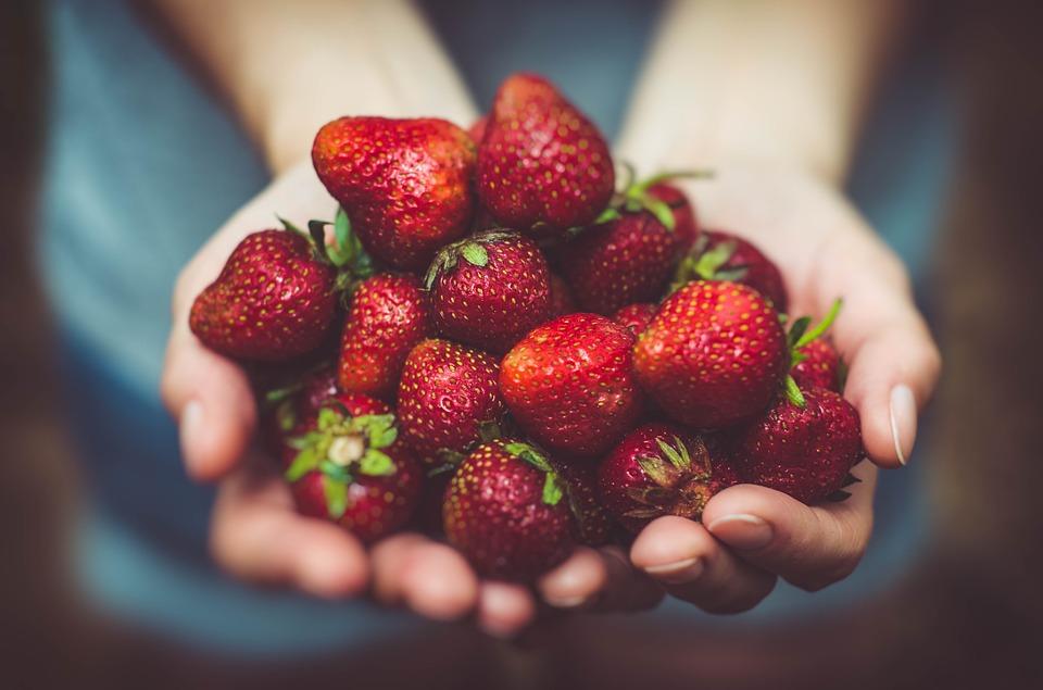 Jordgubbar – här plockar du schysst
