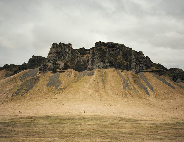 Thinking Like a Mountain. Utställning av Helene Schmitz på Prins Eugens Waldemarsudde