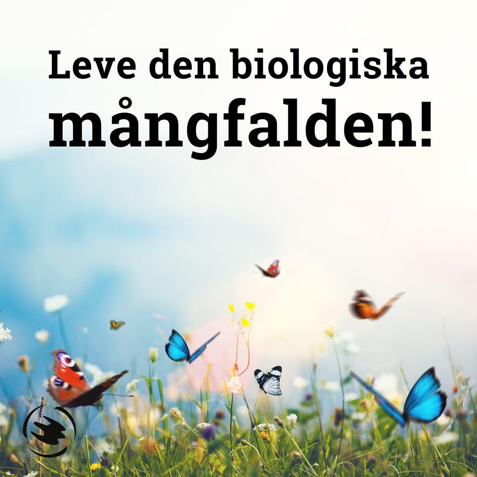 Biologiska Mångfaldens Dag