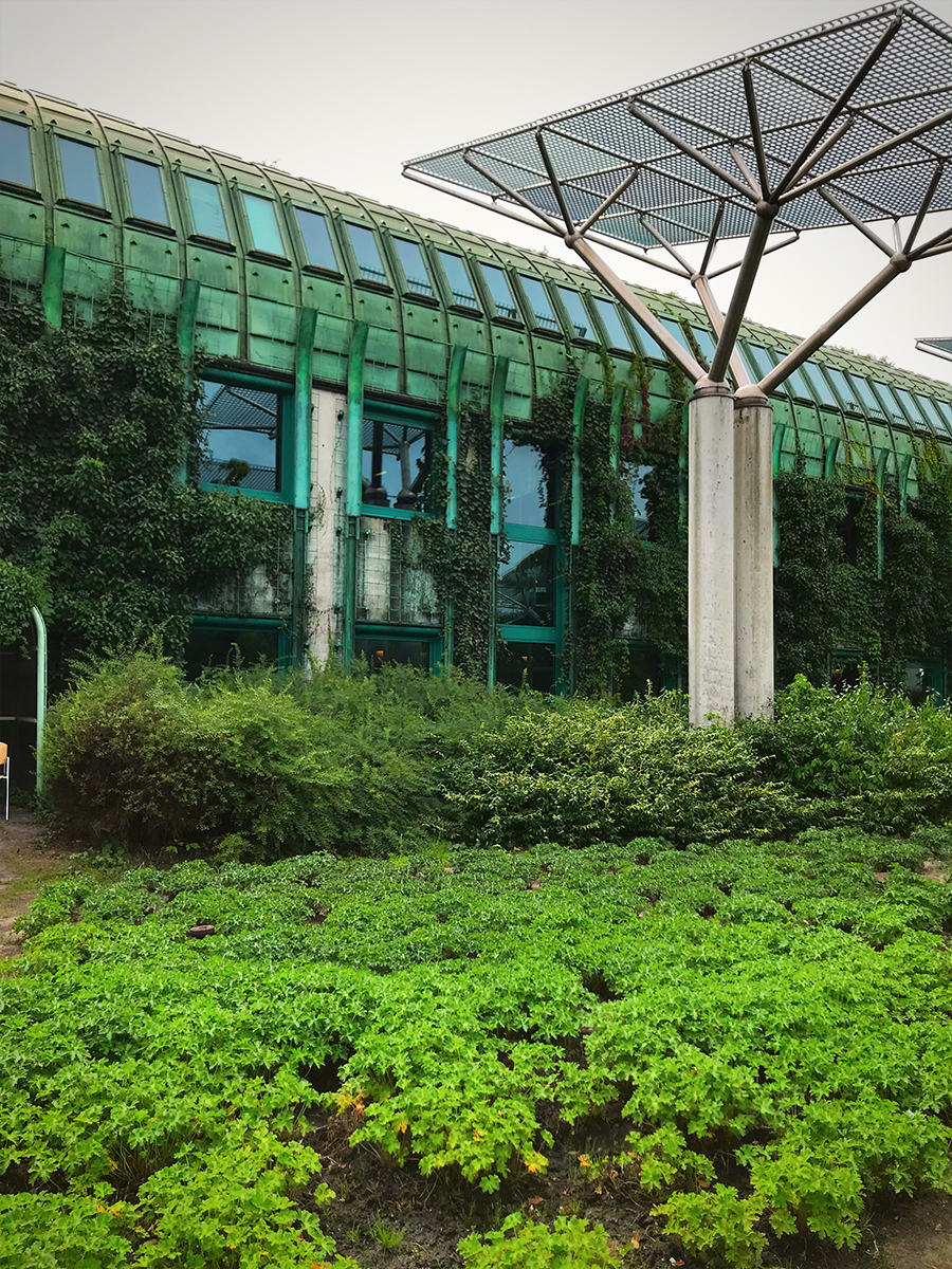Trädgårdsinspiration – Warszawa University Library